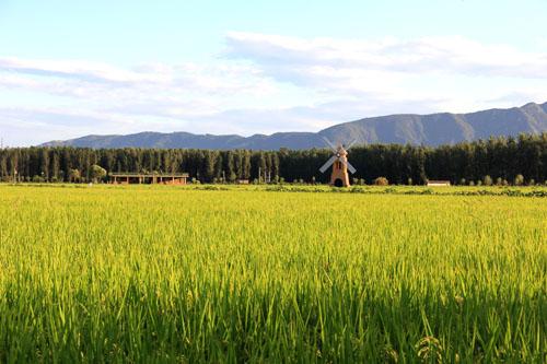 中国最美休闲乡村和中国美丽田园推介结果揭晓