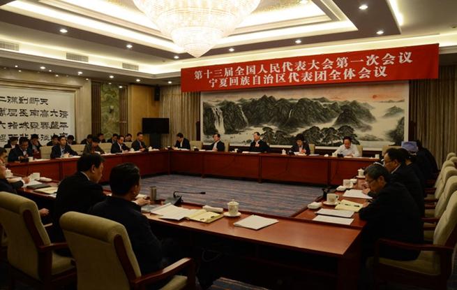 宁夏代表团举行全体会议 审议国务院机构改革方案