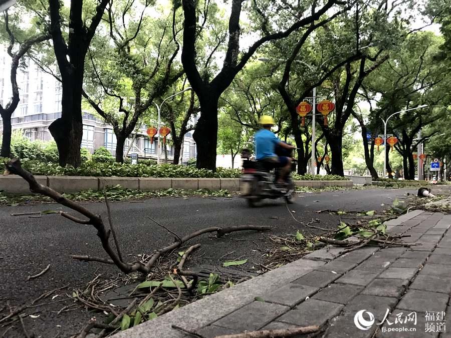 大风袭来,福州华林路满地都是吹落的树枝。人民网福建频道詹托荣 摄