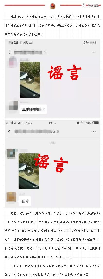 金钱豹在河南南乐县出没?谣言!涉事男子已被行拘