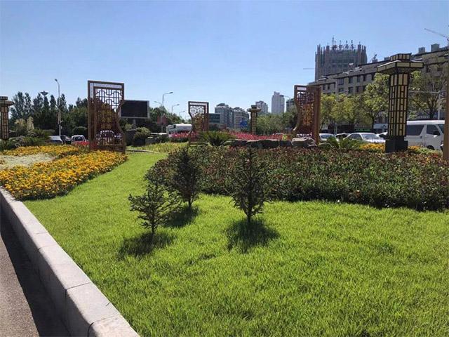 """旗园林绿化事业中心提升绿化""""颜值""""助力创建全国文明城市攻坚"""