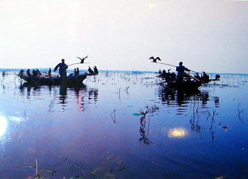 山东滕州微山湖湿地红荷旅游风景区