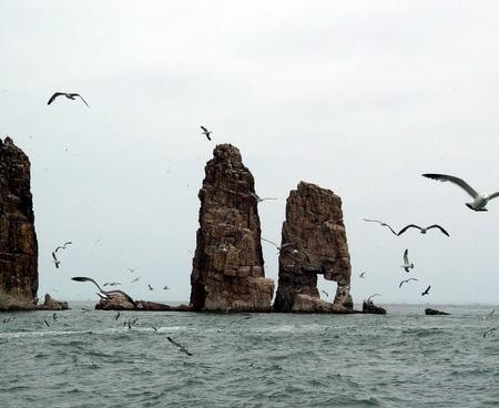 连接胶东和辽东半岛的交通线,多种海蚀海积等地质遗迹景观.