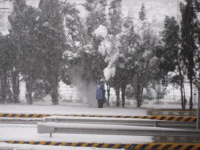 并且用竹竿打掉压在树上的积雪,预防树杈被折断而影响人员和车道安全.