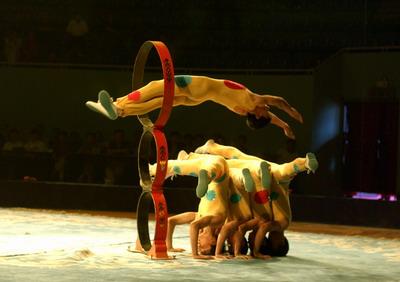 市马戏团演员在表演